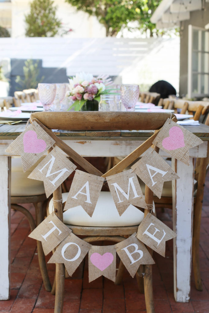 safari chic baby shower