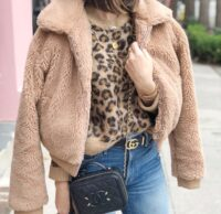 leopard and teddy